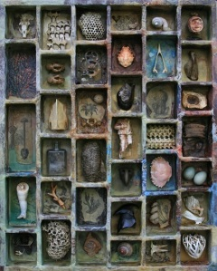 Rebecca Edwards Art - The Naturalist's Childhood
