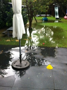 Backyard flooded on a rainy day