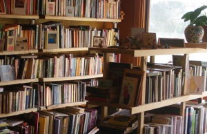 Bookshelves in Robyn's study