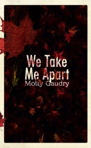 Writer Molly Gaudry Book Cover - We Take Me Apart