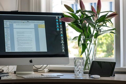 Writer Louise Allan's desk with computer and flowers