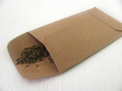 Plain brown paper seed packet with seeds spilling out