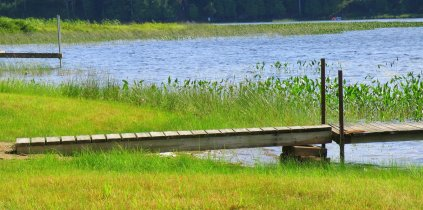 Dock on marsh